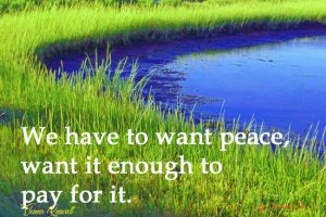 Eleanor 12:  Peace